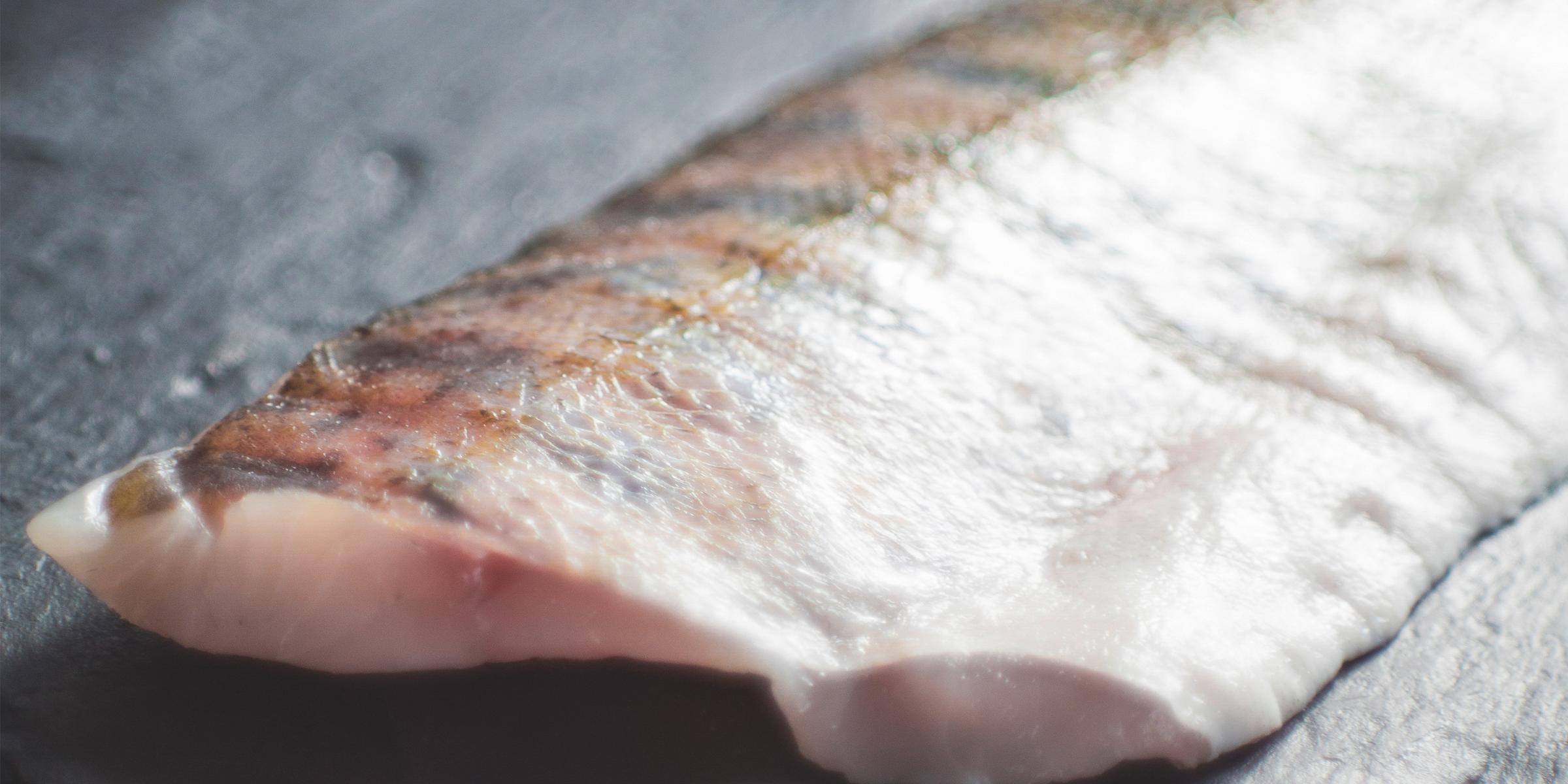 omega 3 fatty acids found in fish