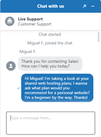 Screenshot of support chat