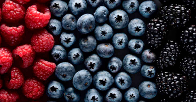 The antioxidants in berries deliver protection to hair follicle
