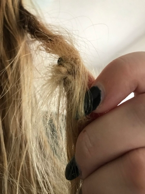 Tangled Hair | Knotty Hair: How to have tangle free hair?