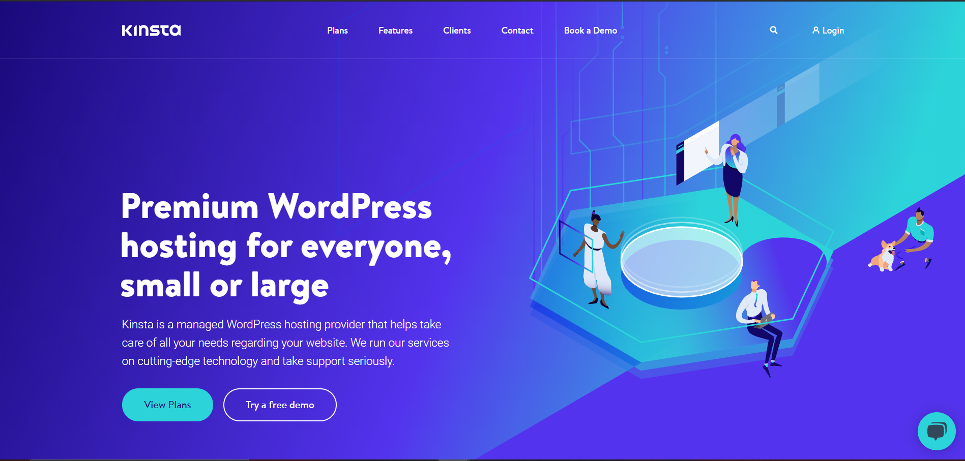 kinsta home page