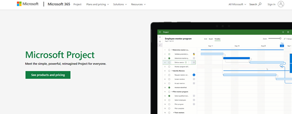 Microsoft Project for online project management
