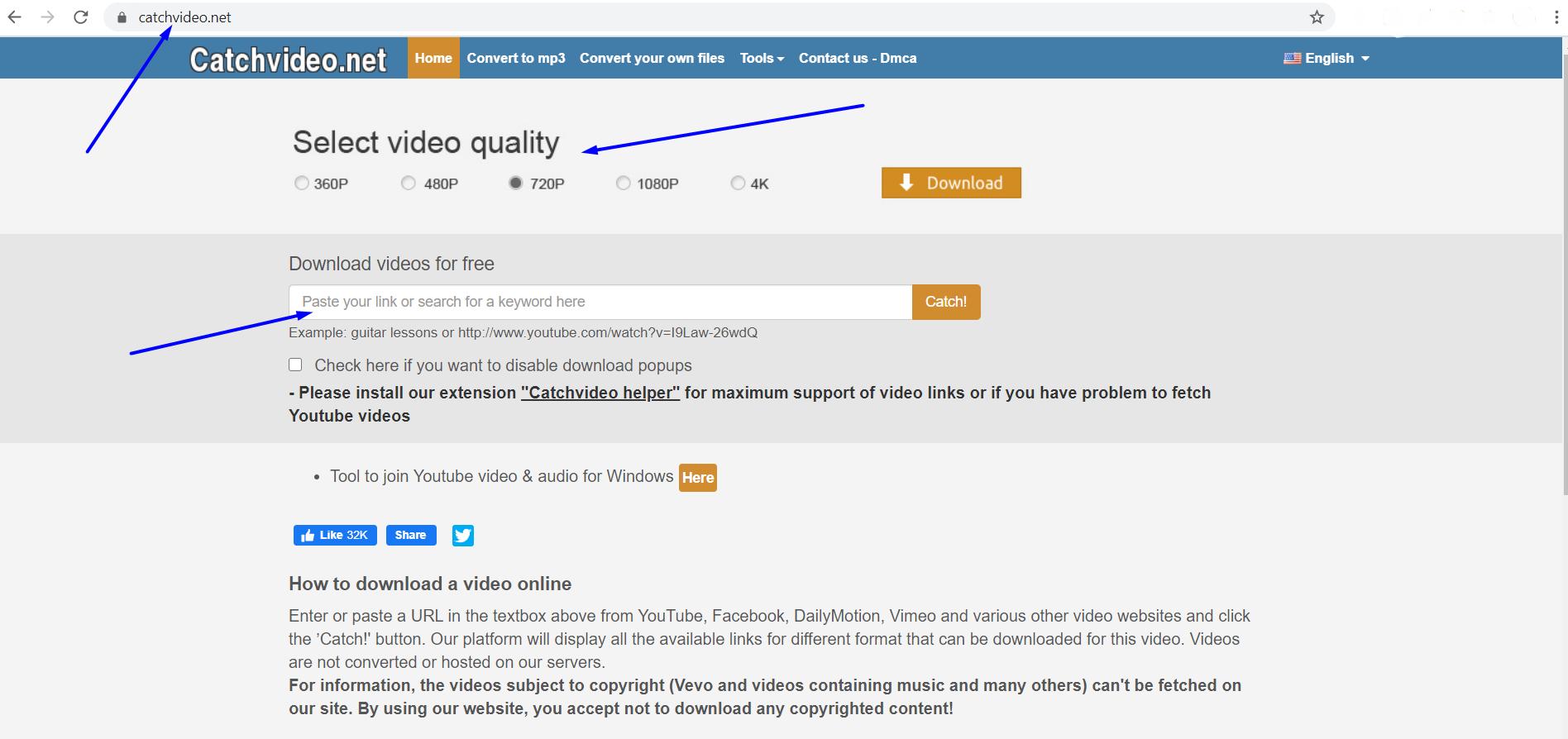 catchvideo.net step 1