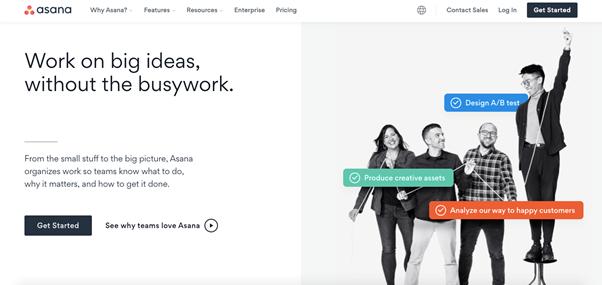Asana to organize tasks and workflows